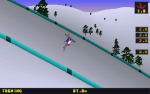 Deluxe Ski Jump (DOS, 2001)